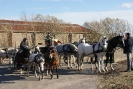 Paarden zegening Vlissegem_8