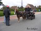 Paardenzegening Vlissegem editie 2016_1